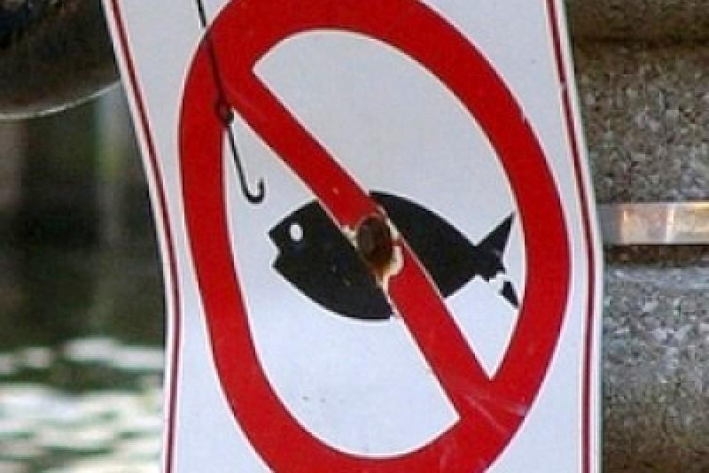 когда запрещена ловля раков в татарстане