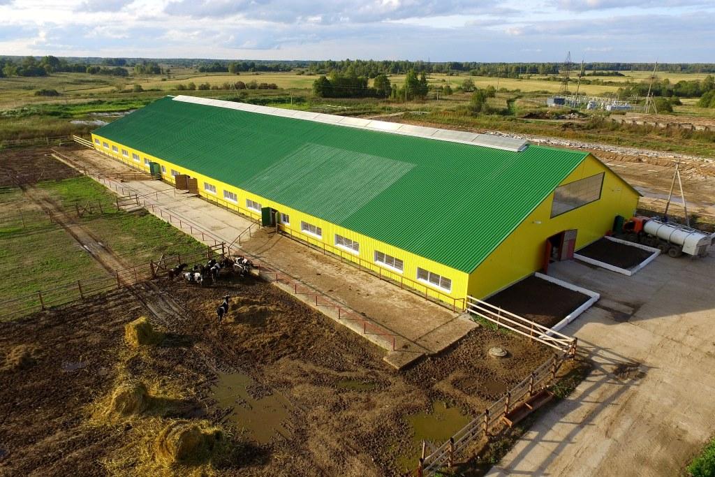Холдинг «АгриВолга» заколчил модернизацию молочно-товарной фермы на 420...</div> </li> <li> <a href=