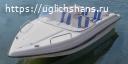 Купить лодку (катер) Wyatboat-3 У