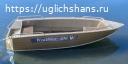 Купить лодку (катер) Wyatboat-430 al