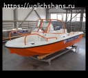 Купить лодку (катер) Wyatboat-430 DC combi