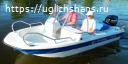 Купить лодку (катер) Wyatboat-430 DC pl