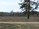 Продаются земельные участки в д. Левайцево